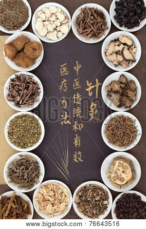 Acupuncture needles with chinese herbal medicine selection and calligraphy script. Translation describes acupuncture chinese medicine as a traditional and effective medical solution.