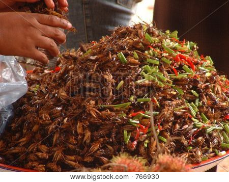 Crickets for Sale as Snack Food at a Roadside in Cambodia