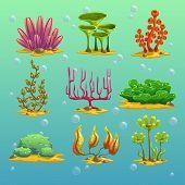 Cartoon algae vector set, aquarium or sea decoration poster