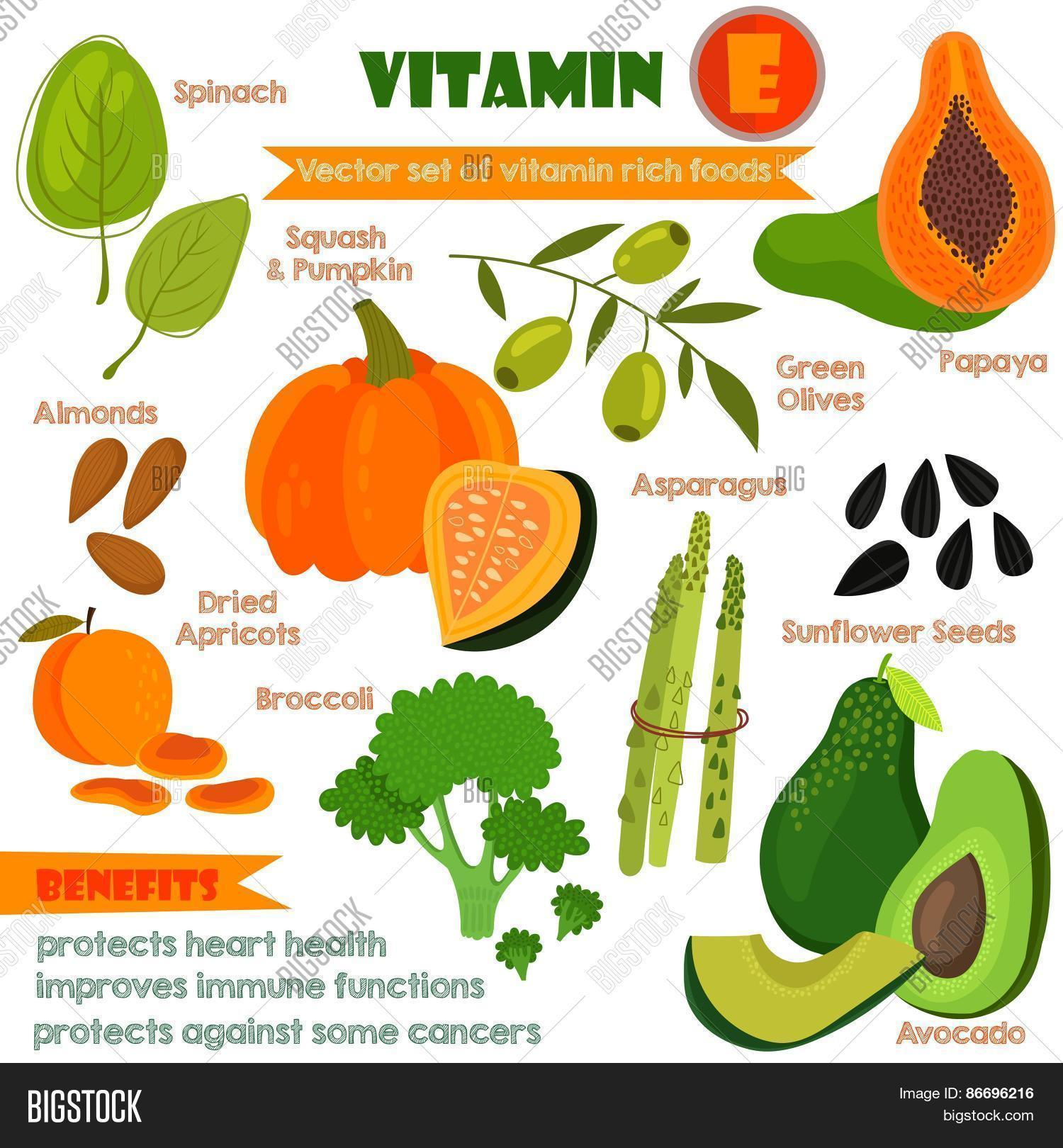 Fruits And Vegetables Containing Vitamin E Vitamins minerals vector photo free trial bigstock vitamins and minerals foods illustrator set 13ctor set of vitamin rich foods vitamin workwithnaturefo