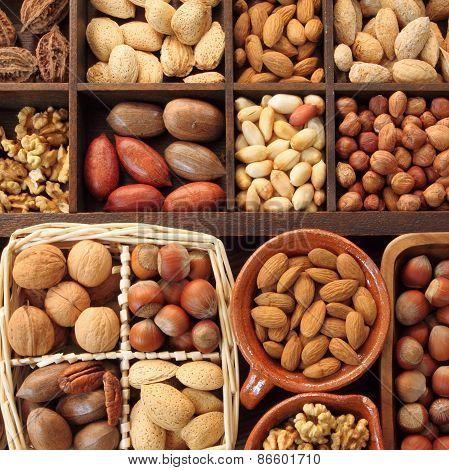Nut Types