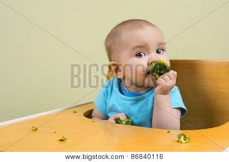 Baby Eats Broccoli