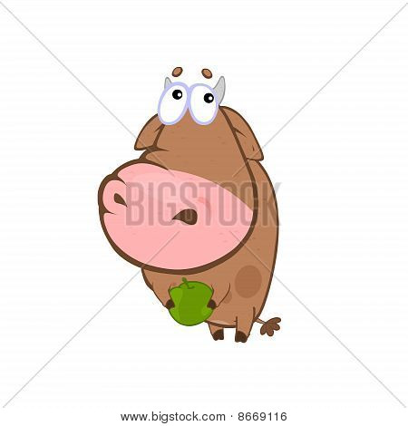 Lovely cow holds an apple. Cartoon image isolated on white poster