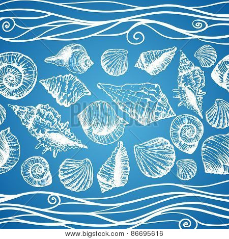 Hand drawn pattern with various seashells