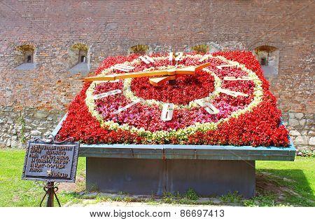 Flower Clock Under The Wall Of The Bernardine Monastery Lviv, Ukraine