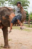 Teenager sit on elephants trunk adventure in Surin Thailand poster
