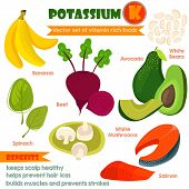 Vitamins and Minerals foods Illustrator set 3.Vector set of vitamin rich foods.Pottansium K-bananas beets spinach avocado white beans mushrooms and salmon poster