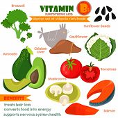 Vitamins and Minerals foods Illustrator set 9.Vector set of vitamin rich foods. Vitamin B5-broccoli chicken liver avocado sunflower seeds cauliflower tomatoes mushrooms and salmon poster