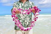 Hawaii tradition - giving a Hawaiian flowers lei. Portrait of a male person holding a garland of flowers as the Hawaiian culture welcoming gesture for tourists travelling to the Pacific islands. poster