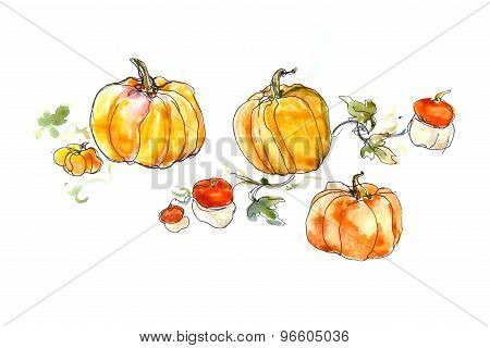 watercolor still life of a pumpkin with leaves