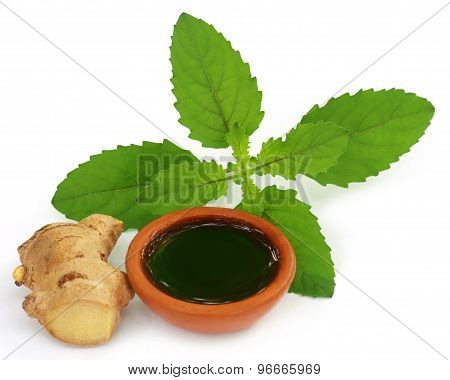 Ayurvedic combination of holy basil and ginger over white background poster