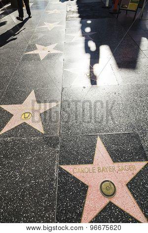 Carol Bayer Sagers Star On Hollywood Walk Of Fame