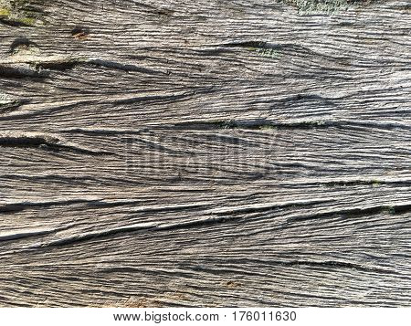 background textured surface old wood on the wall