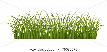 Green grass border realistic vector illustration of green grass EPS 10 contains transparency.