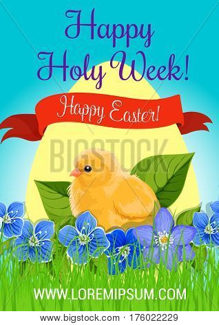 Happy Easter poster or Holy Week greeting card and wishes design. Vector paschal egg and chicken chick in flowers bunch of crocuses and green springtime grass. Easter hunt spring religion holiday