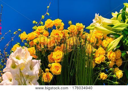 Flower wedding holiday decoration, beautiful yellow roses blooming bouquet on blue