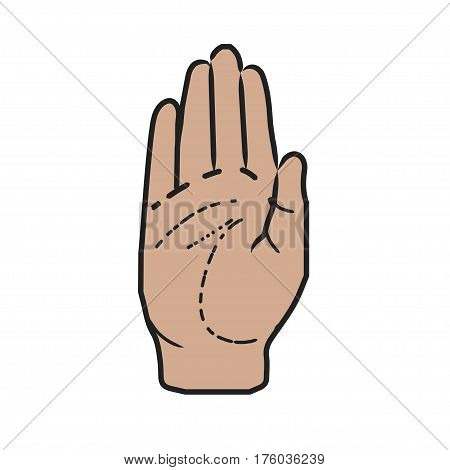 The palm of the hand drawn in cartooon style
