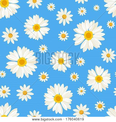 Vector seamless pattern with white daisy flowers on a blue background.