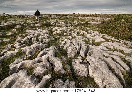Rocky landscape of the Burren National Park in County Clare southwestern Ireland