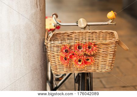 Wicker basket of a bicycle with flowers.
