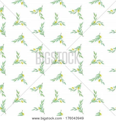 Hand drawn watercolor olive branch with green olives on a white background