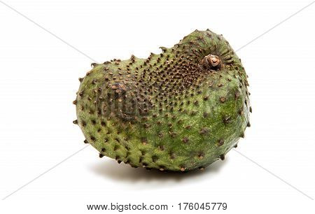 Soursop exotic fruit isolated on white background