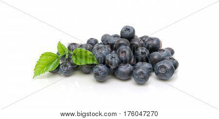 blueberries isolated on white background close-up. horizontal photo.
