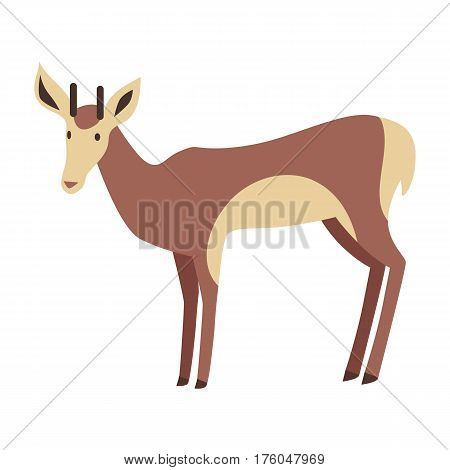 Young fallow deer male with horns flat style vector. Wild herbivorous animal. European fauna species. For nature concepts children s book illustrating, printing materials. Isolated on white background