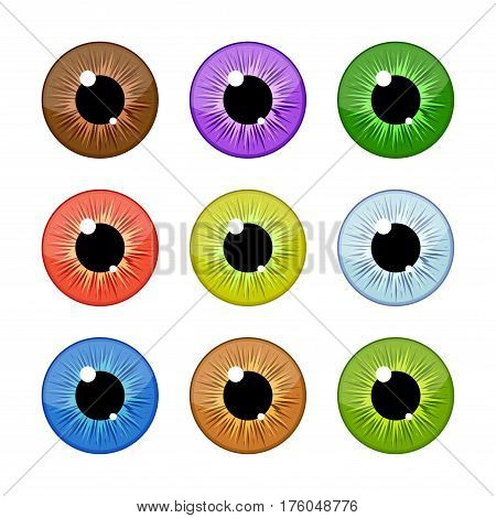 Human eyeballs iris pupils set isolated on white background. Colorful eyes vector Illustration