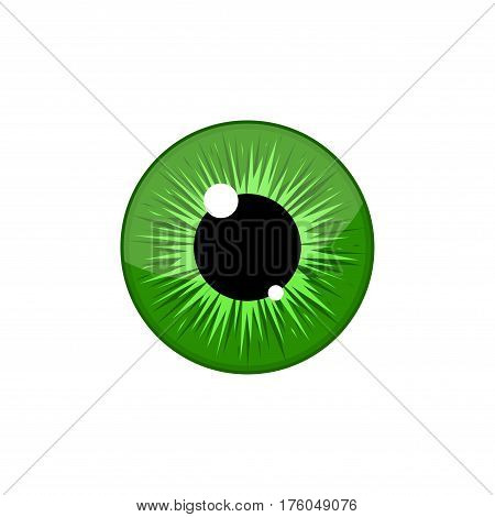Human green eyeball iris pupil isolated on white background. Eye Vector Illustration