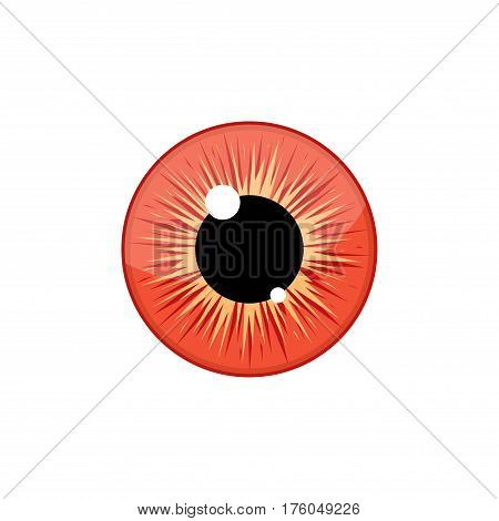 Human blue eyeball iris pupil isolated on white background. Eye Vector Illustration