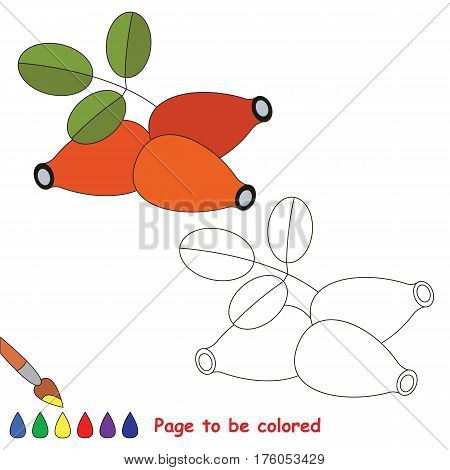 Educational worksheet to be colored by sample. Easy educational paint game for preschool kids. Simple kid coloring page with Dogrose.