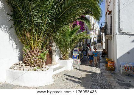 Narrow Street Of Peschici On Puglia, Italy