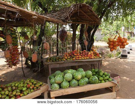 Fruit Vendor's Stall in Sri Lanka with coconutmango and watermelon horizontal