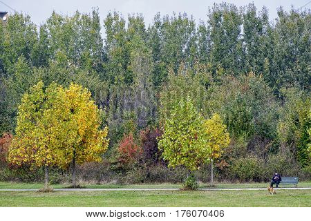 MILAN, ITALY - OCTOBER 22, 2016: Milan (Lombardy Italy): the Parco Nord at fall. Man with his dog