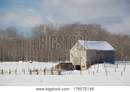 Snowy Old  Barn With Diagonal Boards And Barnyard Landscape