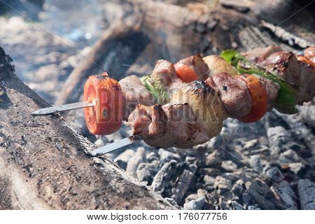 Juicy slices of meat with sauce prepare on fire. fresh hot grilled chicken shish kebab barbecue on grid over charcoal