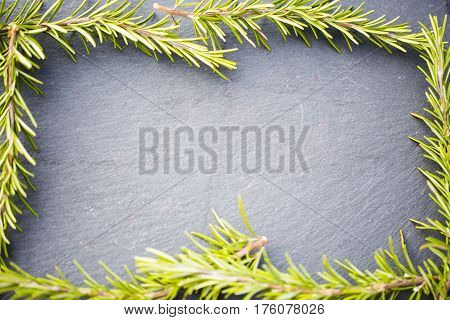 Rosemary as frame slate board, blackboard, text