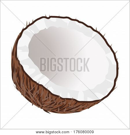 Cut in half coconut on white background. Exotic tropical nut icon. Healthy organic nutrition. Cartoon vegetarian food picture. Empty coconut without milk. Palm fruit isolated vector illustration.