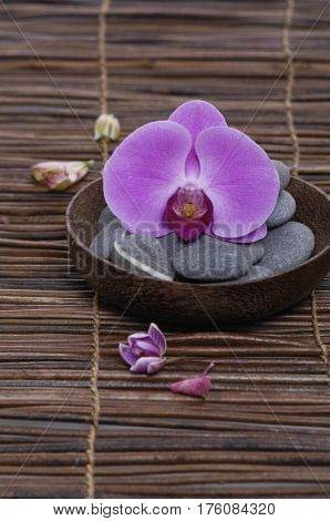 Bowl of orchid with gray stones on mat