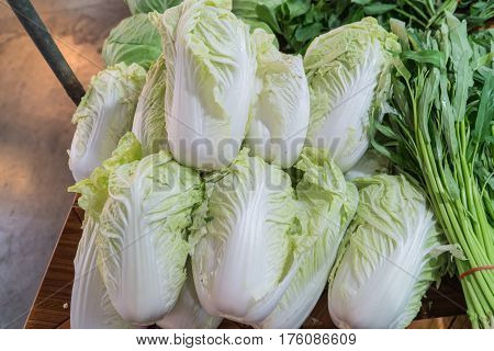 The White and green color Chinese cabbage or Napa cabbage