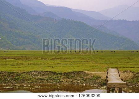 View over River, Wooden Bridge, Pasture and Mountain Ranges near the Phewa Lake in the Himalayas, Pokhara, Nepal.