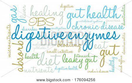 Digestive Enzymes Word Cloud