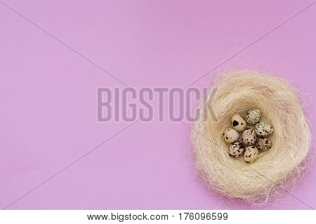 Easter Quail Eggs In A Nest On A Pink Background.