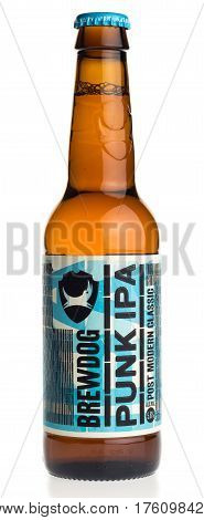 GRONINGEN, NETHERLANDS - MARCH 10, 2017: Bottle of Scottish Brewdog Punk IPA beer isolated on a white background