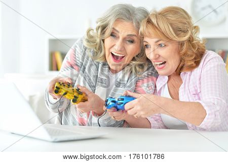 Portrait of elderly people playing computer game