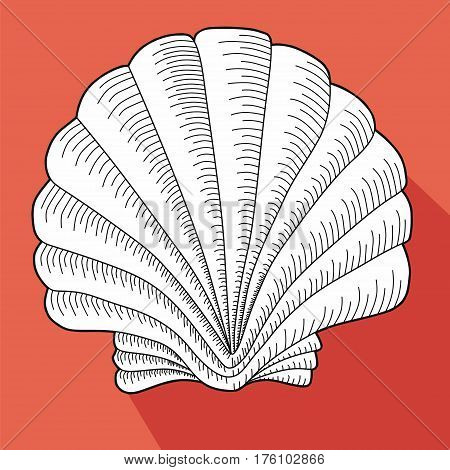 Sea shell. Line work. White cockleshell on a salmon background.