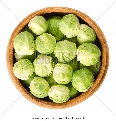 Brussels sprouts in wooden bowl. The leafy green vegetables look like miniature cabbages. Raw edible buds, member of Gemmifera group. Isolated macro food photo close up from above on white background.