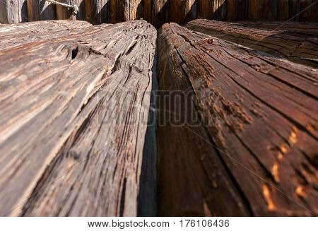 Perspective view of old obsolete cracked logs.