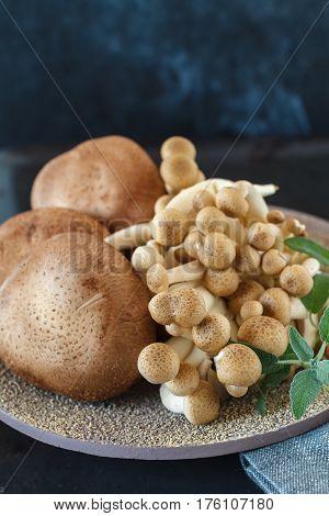 Shiitake and shimeji mushrooms on a plate, closeup